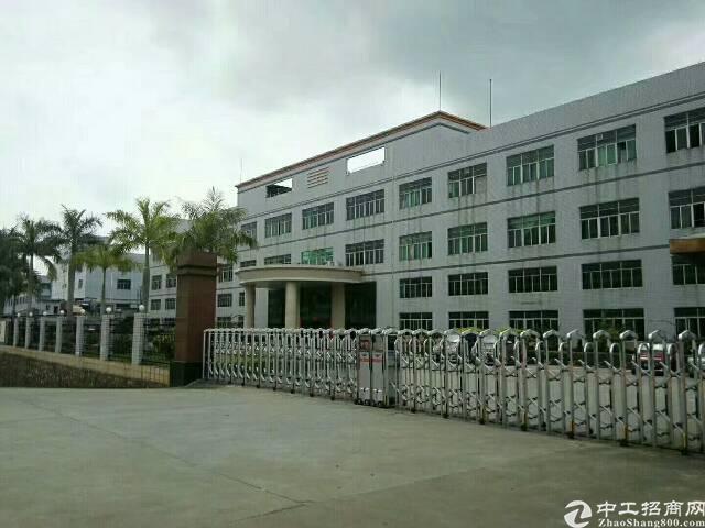 观澜  桂花  桂月路边 大工业园内楼上整层3600平