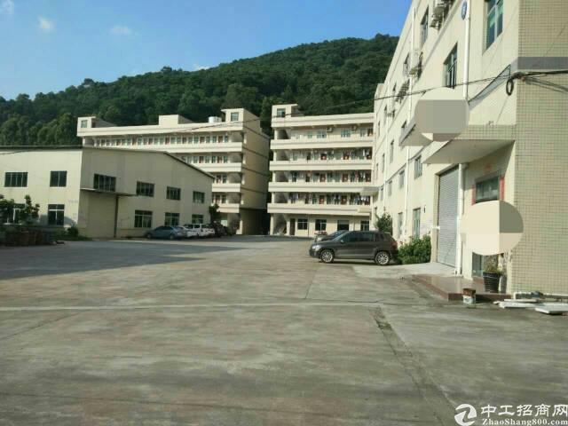 清溪镇原房东独栋厂房4200平