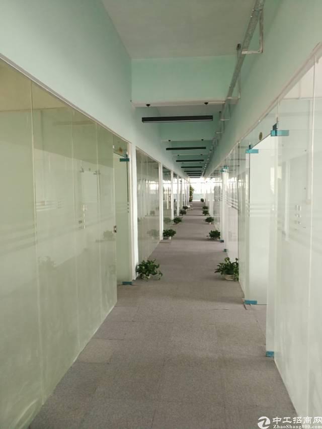横岗地铁站320平方精装电商办公室出租!-图3