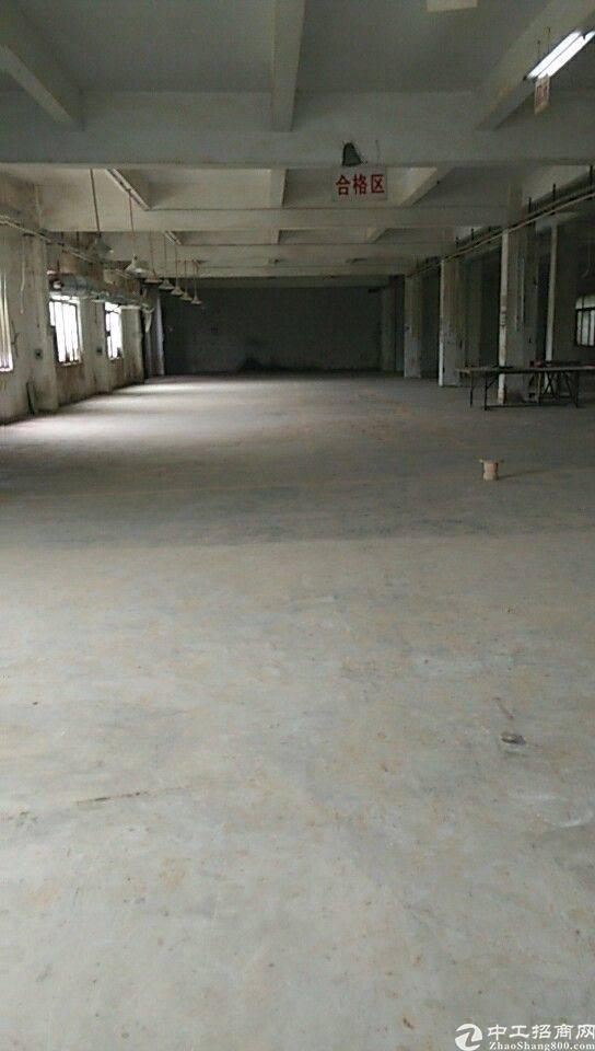 坪山新区坑梓镇新出标准独门独院厂房2850原房东厂房低价出租
