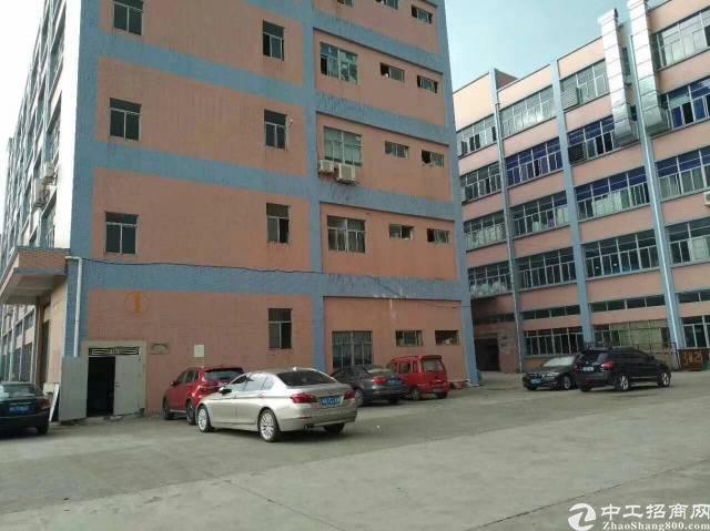 公明东坑松柏路边大型园区厂房楼上1500平米-图2