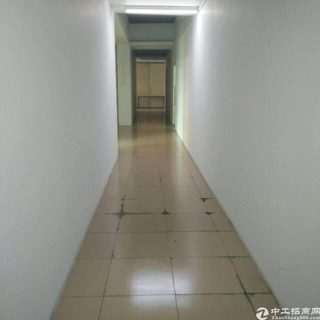 清溪一楼现房300平现成装修无尘车间-图4