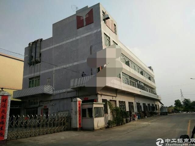石排镇原房东独院标准厂房