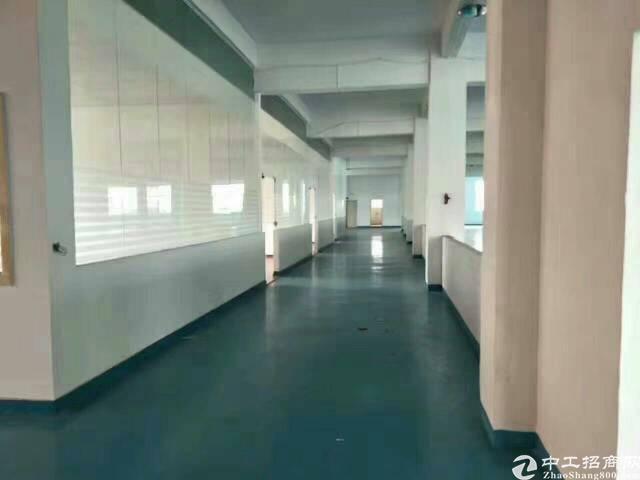 平湖华南城标准高新技术园厂房1500平方米招租-图5