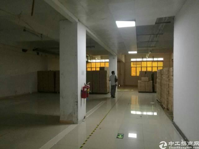 福永塘尾原房东整层2800平方电子厂房招租-图2