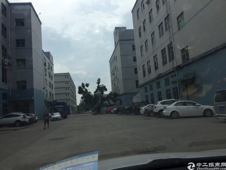 光明新区新出一楼1300平方厂房招租