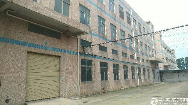 松岗松福大道边新出1-3层原房东独院厂房4500平方电315