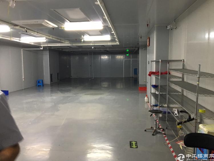 福永和平新出厂房500平,无乘车间豪华装修,租金22