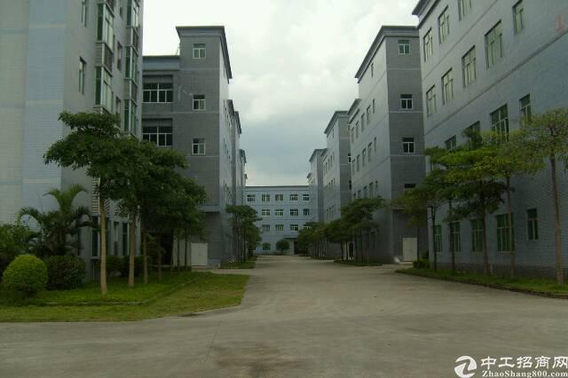 东莞茶山大小优质厂房我这里都有 欢迎来电-图8