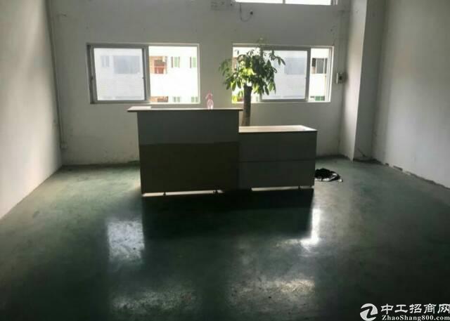 广州增城新塘独院厂房16000平方带装修水电齐全招租-图3