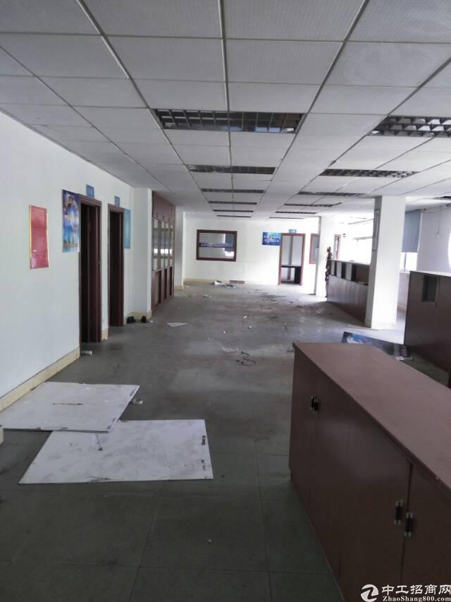 塘厦清湖头2楼800平方办公楼出租  价格地至10元园区形象