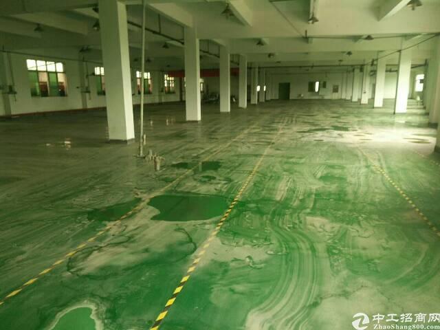 原房东厂房1600平方实际面积 电费8毛 全新地坪漆装修