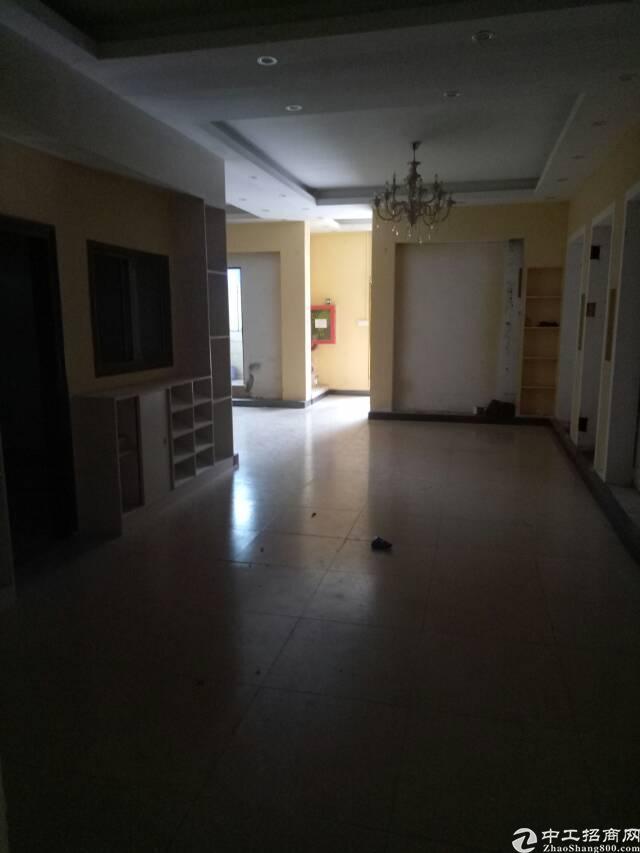 坑梓新出一楼厂房1200平米,现成办公室-图3