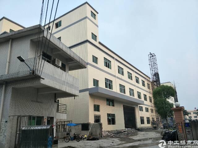 标准厂房,一楼6米带牛角,3吨货梯独门独院!