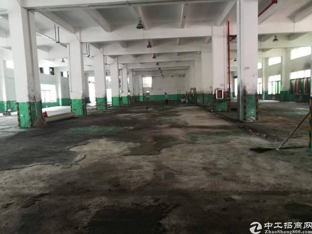 龙华清湖红本工业厂房独院9000平独栋招租