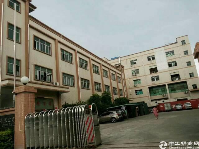 宝安大道旁独院厂房4000平方带精装修办公室 一楼5米高