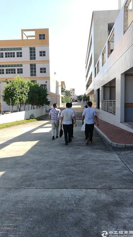 龙华大型电子厂招租香港老板建