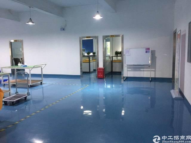 西乡黄田工业区楼上3000平方厂房出租-图5
