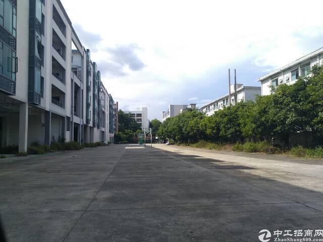 沙井庄村楼上1400平方有装修不要转让费。-图6