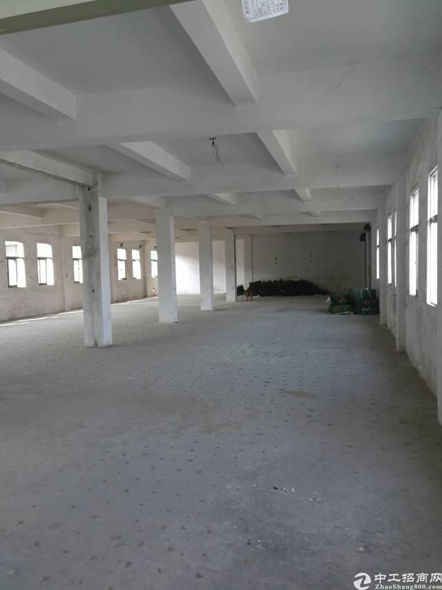 龙岗标准一楼厂房出租600平米