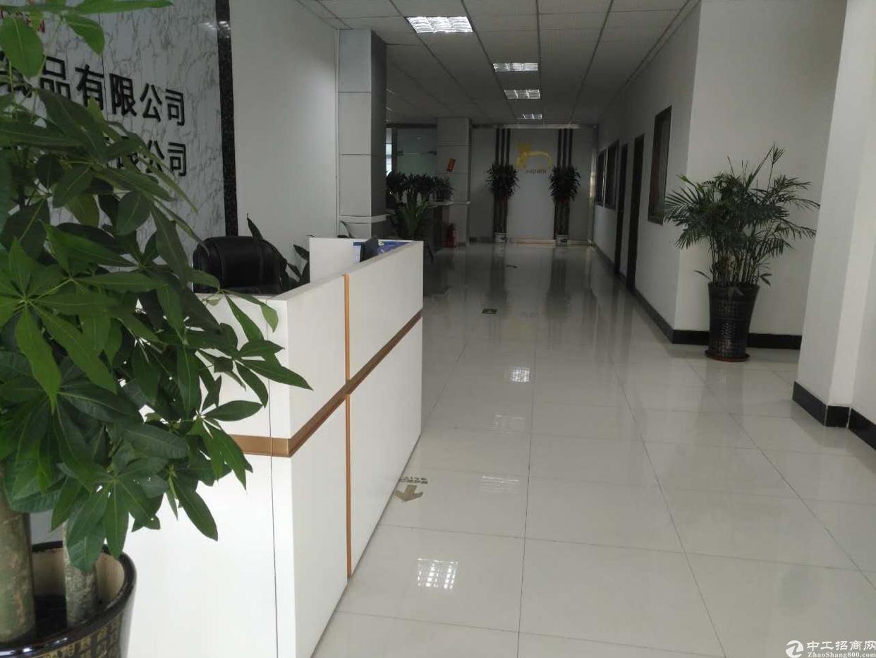 观澜福民新出楼上950平精装修厂房无转让费出租