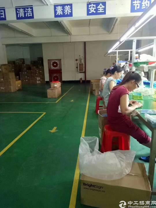 清溪原房东豪华装修厂房