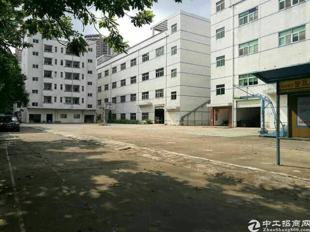 同乐高速路口独院一楼2250平高六米