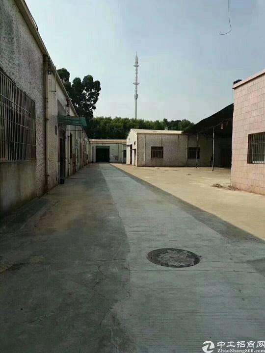 龙华清湖高速出口独院钢构厂房7000平
