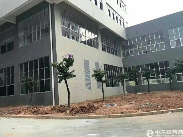 中山小榄新出11500平独栋全新标准厂房,低价出售-图3