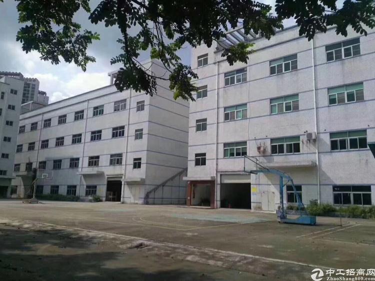 惠州小进口四角楼出口附近新出标注厂房13000出售