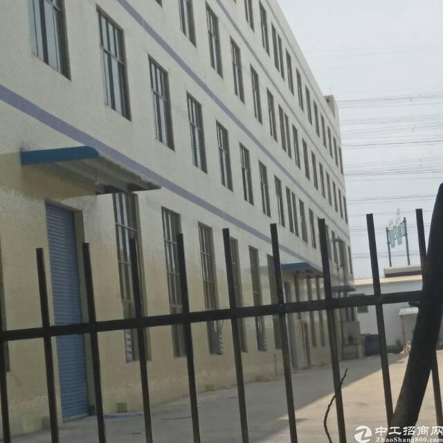 清溪 1号单层120平米 2号厂房三楼300平米 3号铁皮房