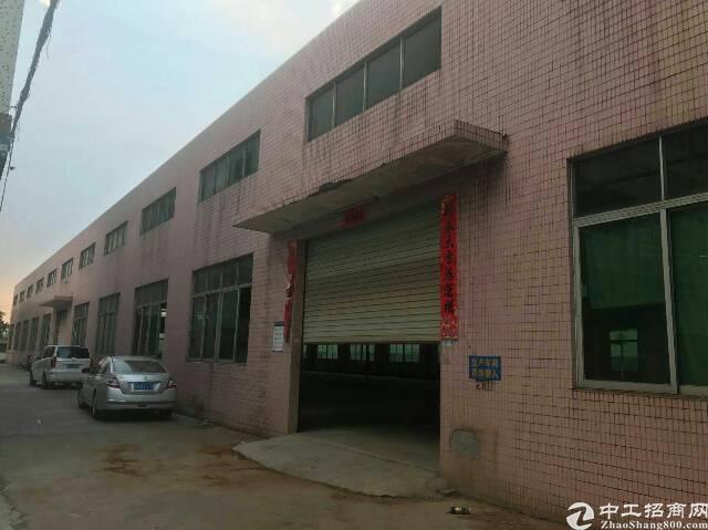 公明南光高速出口新出3500平方9米高独栋钢构出租