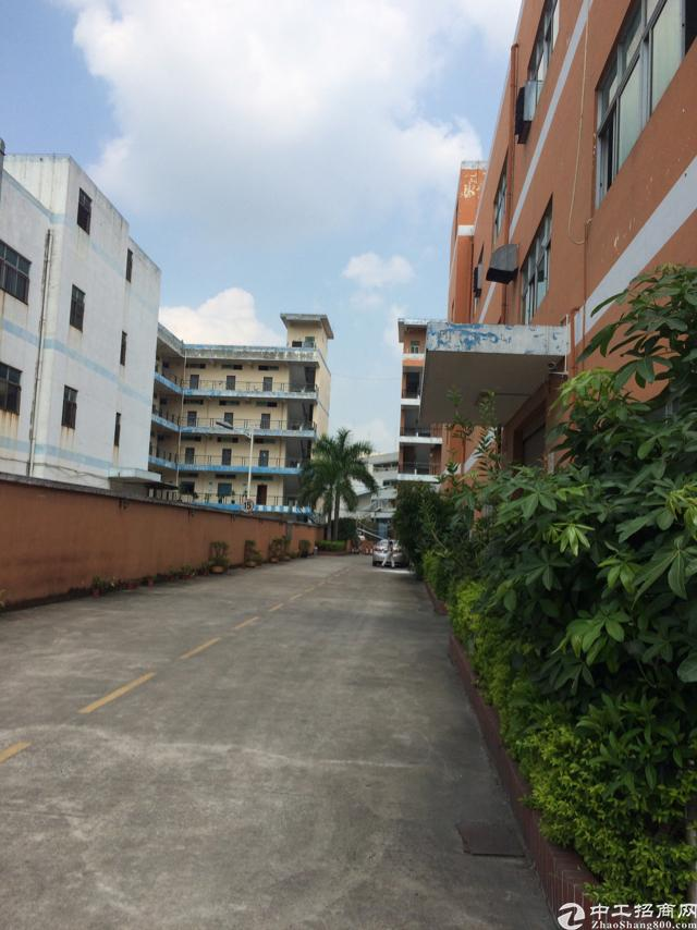 观澜福民福前路边3楼精装修900平方仅租16无需转让费