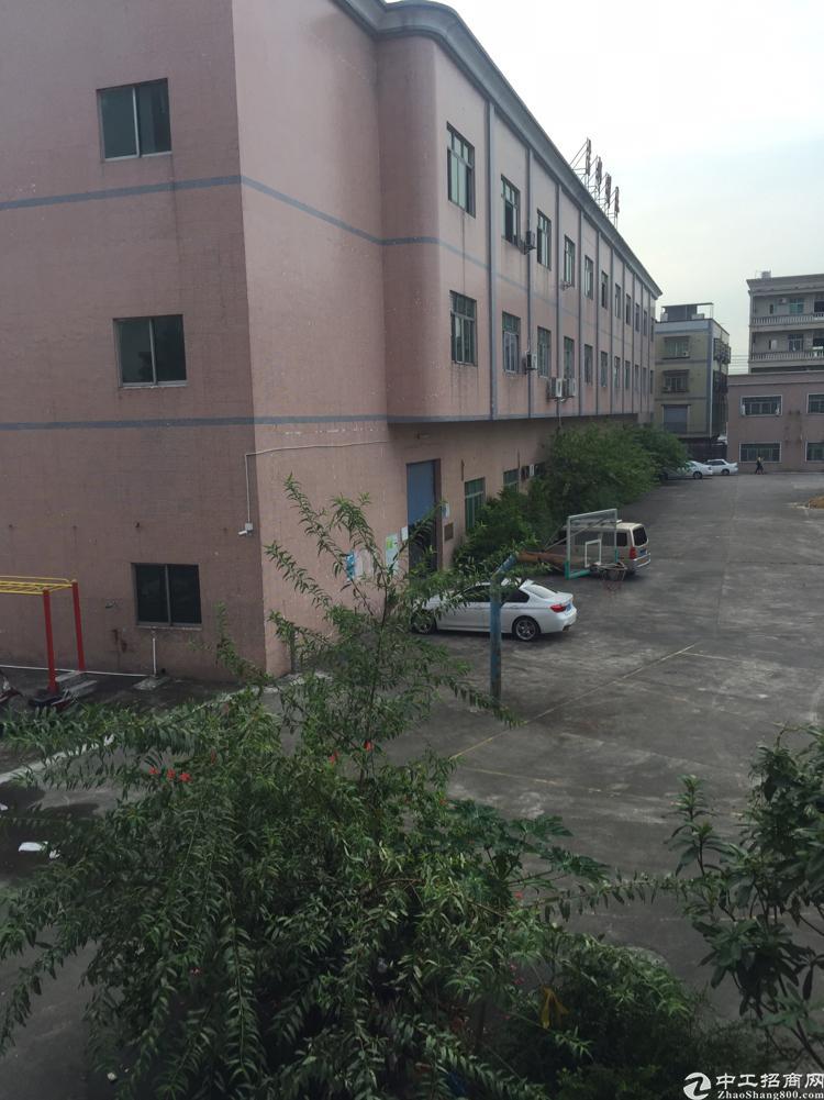 万江新出标准楼房一楼1500平米,高6米