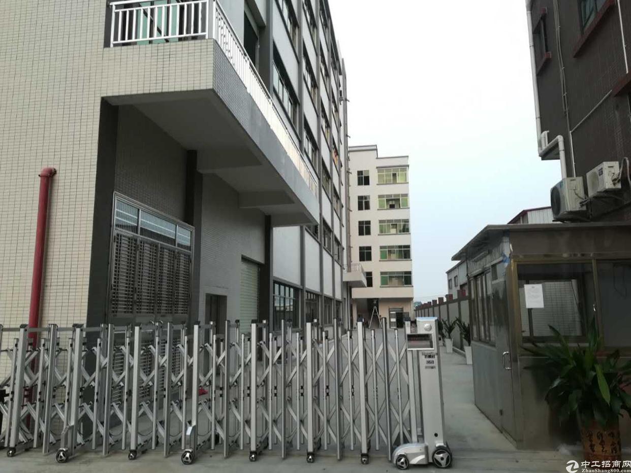租客分租一楼800三楼400办公室,宿舍六间