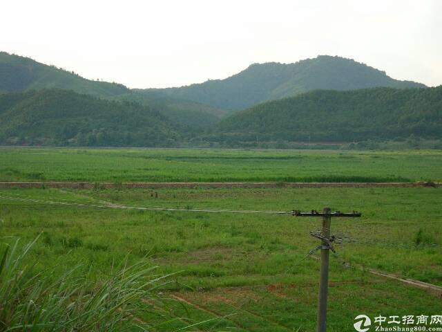 湖北省武汉一手工业用地出售