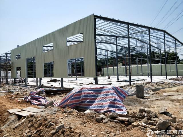虎门沙角独院钢构招租4000平方可以分租滴水10米