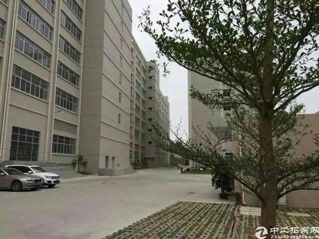 宝安兴东地铁口附近新出单层2400平米带装修出租