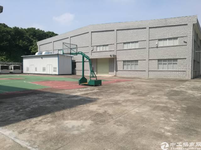 茶山小独院1200平方单层厂房招租