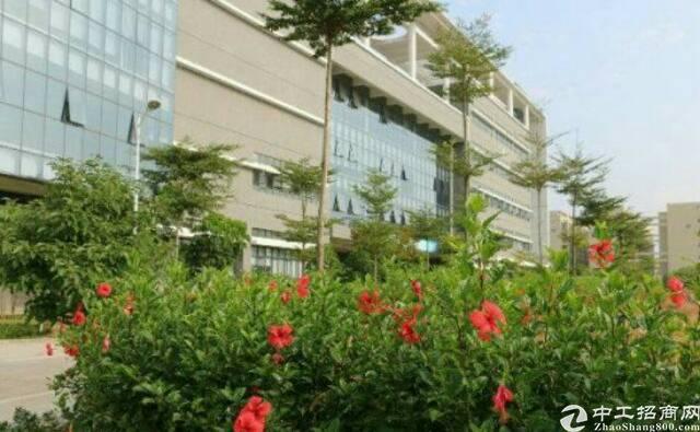 广州增城原房东独院厂房6800平方招租可分租-图4