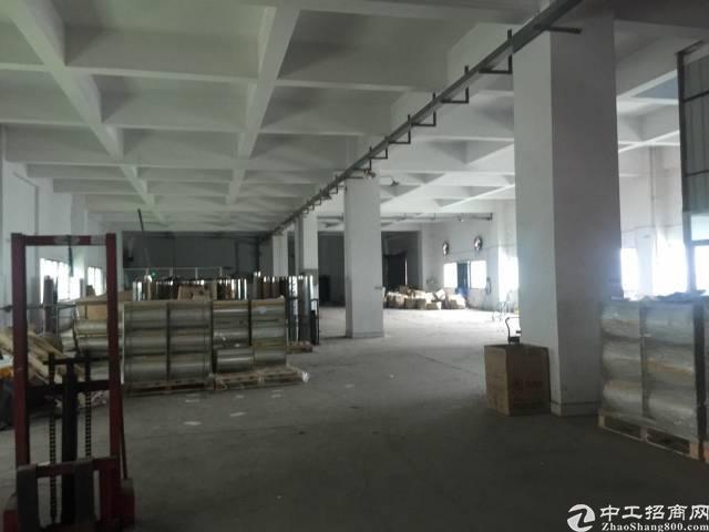 厚街新出科技园独栋厂房6000方低价出租11元-图3