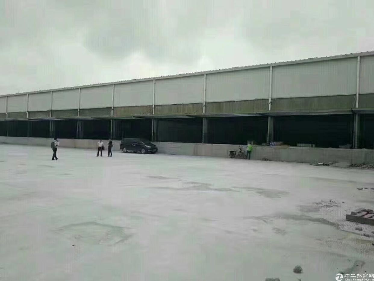 福永沙井新出12000平方米钢构出租