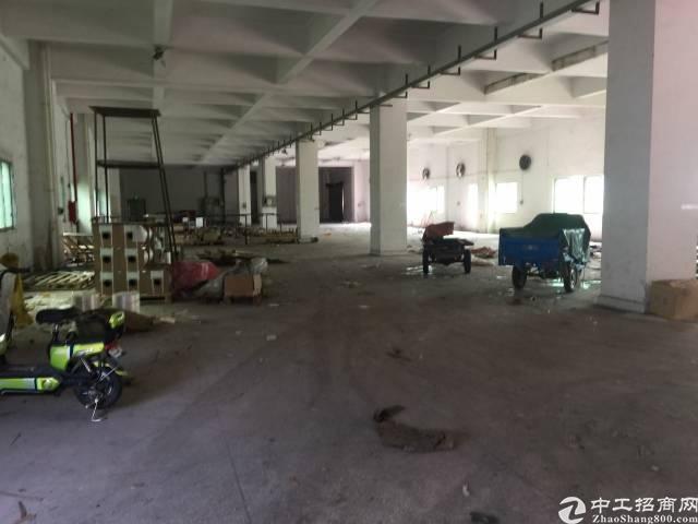 厚街新出科技园独栋厂房6000方低价出租11元-图4