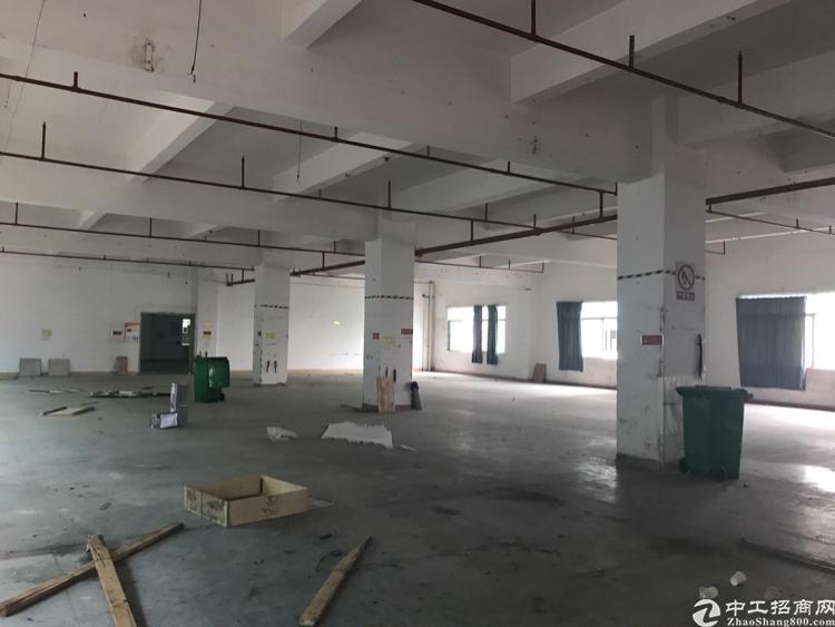 观澜 清平高速出口(楼上带消防喷淋4000平方厂房)招租