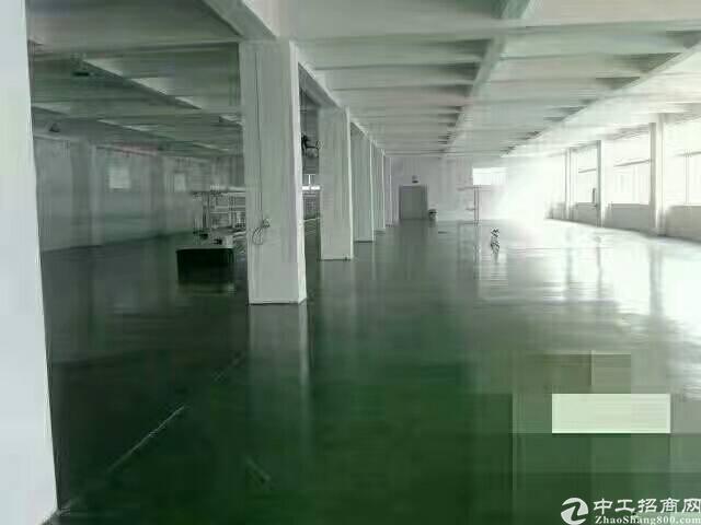 惠东县红本厂房出租