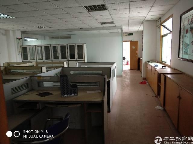 标准独院红本厂房7000平米急售-图7