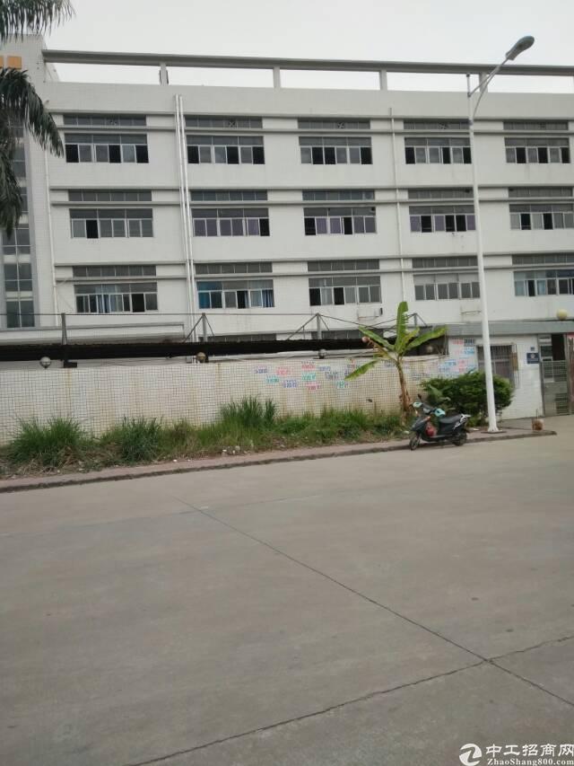 公明大型工业园带装修1300平厂房招租