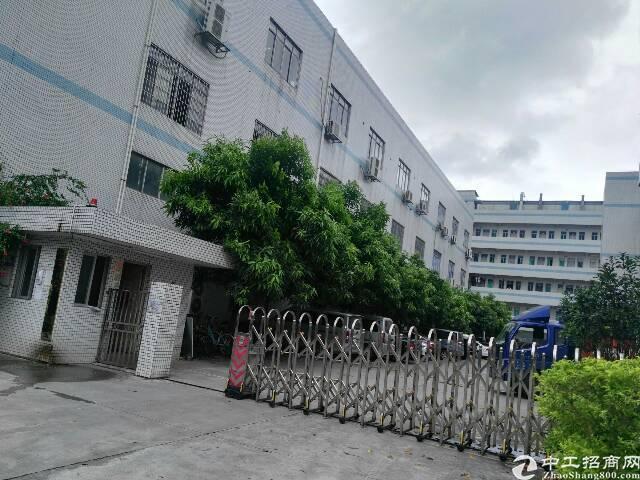 清溪近塘厦标准一楼厂房1600平方米带装修
