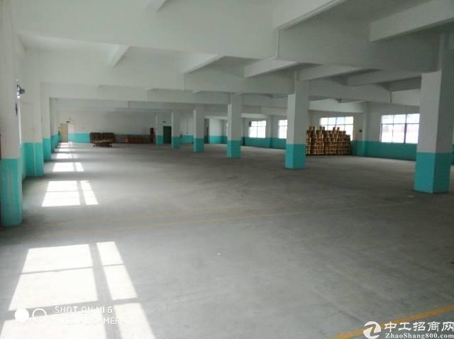 标准独院红本厂房7000平米急售-图5