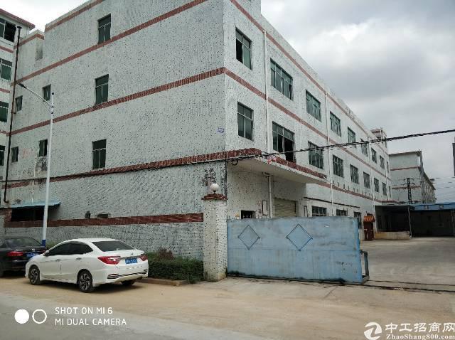 可按揭红本独门独院标准厂房7000平米急售
